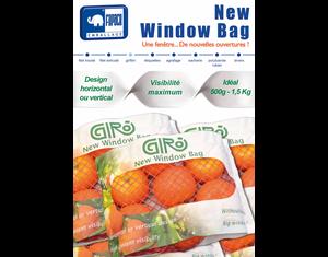 New Window Bag